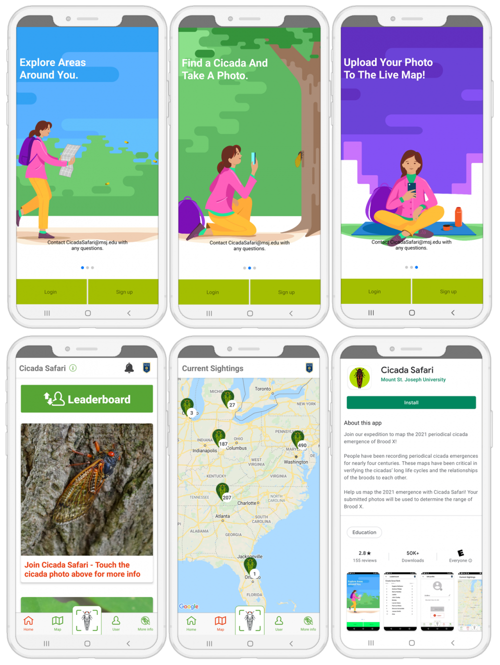 Download the Cicada Safari App to help track local Brood X sitings.