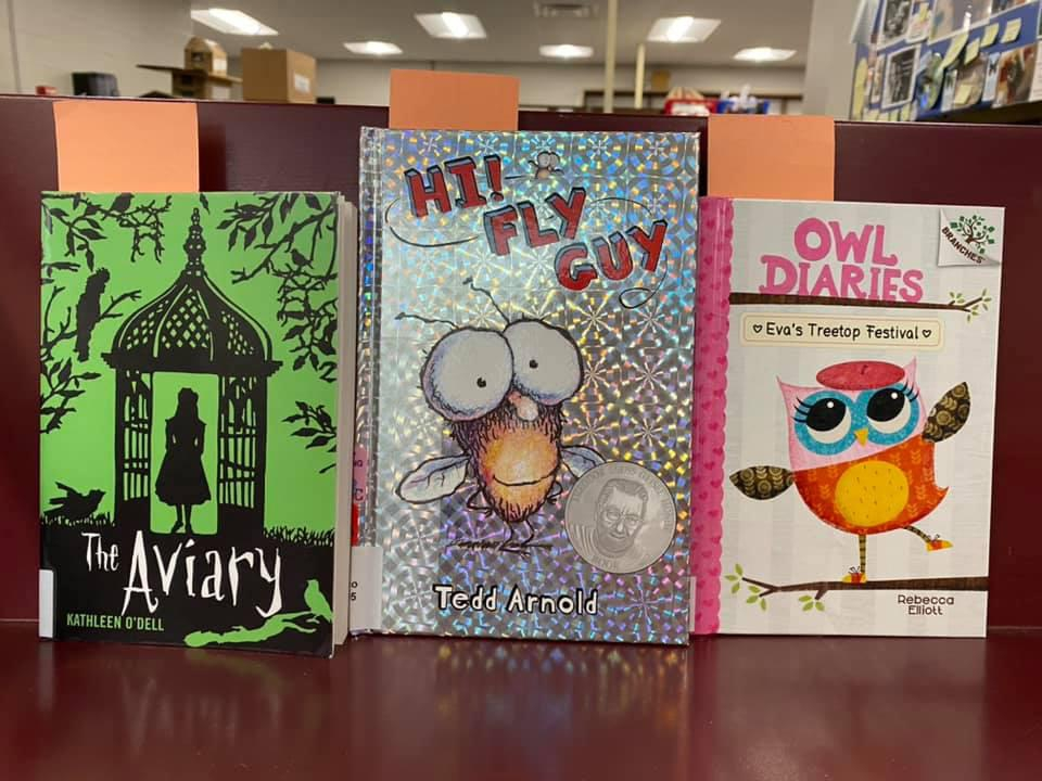New Kids' Books Available for curbside pick-up at the Library - The Aviary by Kathleen O'Dell, Hi Fly Guy by Tedd Arnold, Owl Diaries - Eva's Treetop Festival by Rebecca Elliott