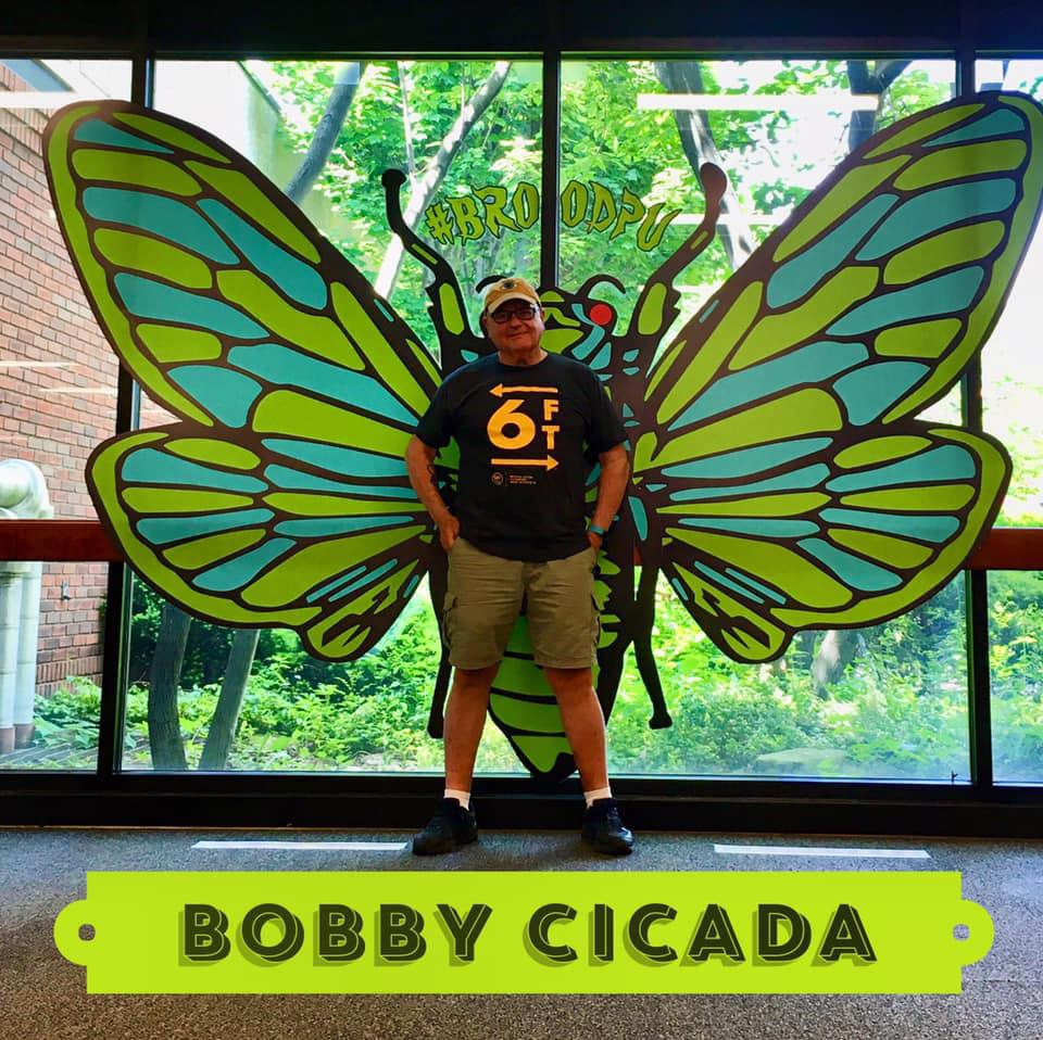 Cicada Yourself for a chance to win an original piece of artwork by West Virginia's own Tinman, Bob Villmagna.