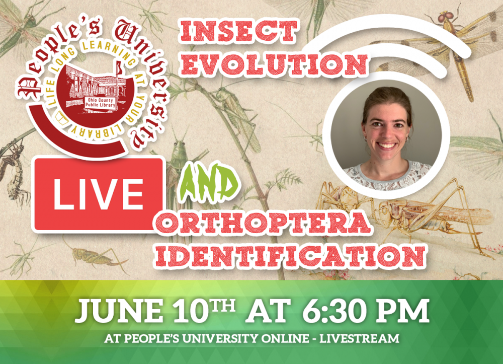 People's University, Bugs and People, CLASS 3: A First Look at Insect Evolution andOrthoptera Identification