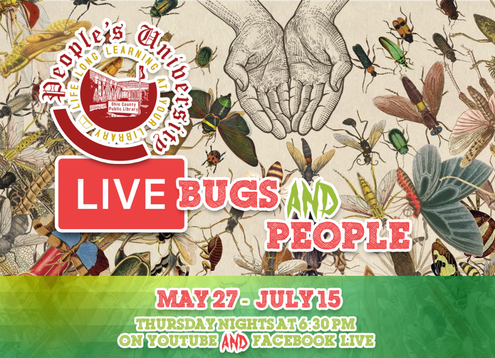 People's University: Bugs and People, Thursday nights from 6:30 pm to 8 pm on YouTube and Facebook Live